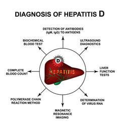 Diagnosis hepatitis d world hepatitis day vector
