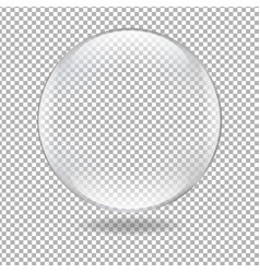 glass ball vector image