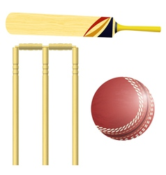 Items for cricket vector image
