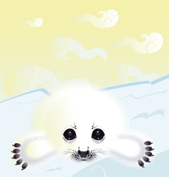 Northern seal vector