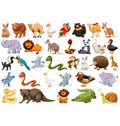 Set wild animal vector