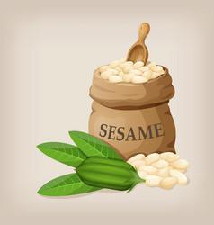 sesame seeds in sack full burlap bag with sesame vector image vector image