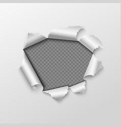 paper hole with torn edges isolated on transparent vector image