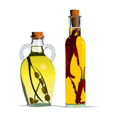 cooking oils vector image