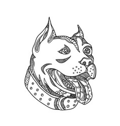 Pit bull head doodle art vector