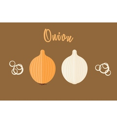 Flat of golden onion whole and half vector image