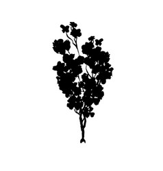 tree black silhouette isolated on white vector image