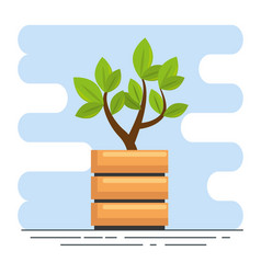 cute houseplant in pot vector image