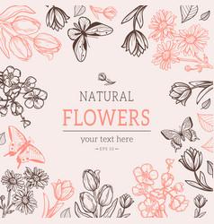 Flower vintage styled sketch background vector