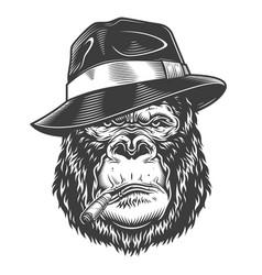 head gorilla vector image
