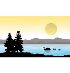 On river swan scenery at sunrise vector
