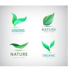 set eco natural logos green leaves vector image