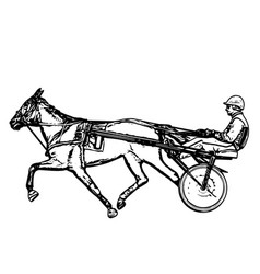 trotter in harness drawing vector image