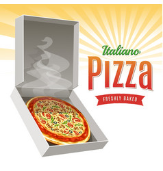 hot pizza vector image