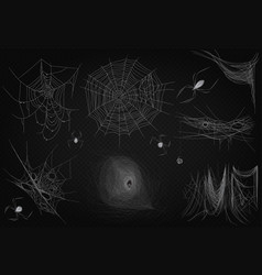 Cobweb set isolated on black transparent alpha vector
