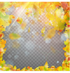Autumn leaves frame and bokeh eps 10 vector