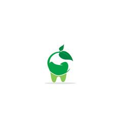 dental tooth green leaf eco logo vector image