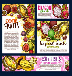 Exotic tropical fruits sketch posters vector