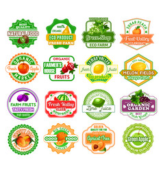 Labels tropical exotic fruit juice icons vector