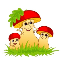 family of mushrooms vector image