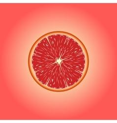 Grapefruit eps 10 vector