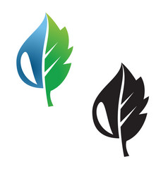 leaf and droplet icon concept vector image