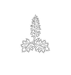 One continuous line drawing beauty fresh acanthus vector