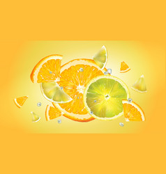 Orange and lemon slices and water droplets vector