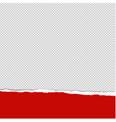 red ripped paper transparent background vector image