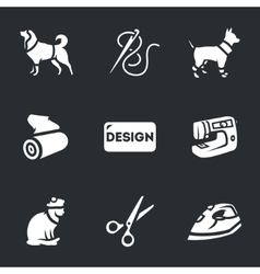 set clothing for pets vector image