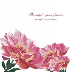 Watercolor Spring flowers peonies vector