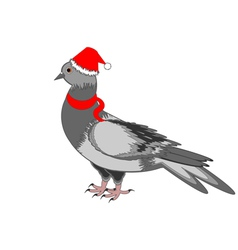 A Christmas dove on a white background vector image