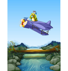a turtle riding airplane vector image