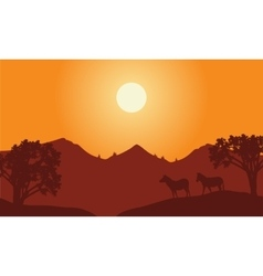 At sunset scenery with zebra silhouette vector image