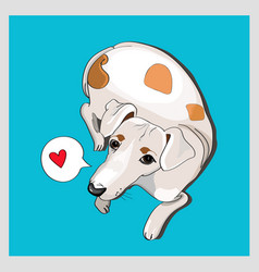 cute white dog lying on blue background vector image