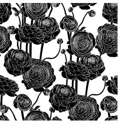 elegant seamless pattern with ranunculus flowers vector image