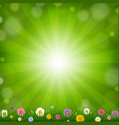 grass with sunburst background vector image