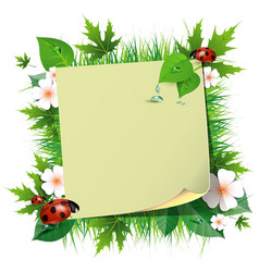 Spring background with grass and ladybug vector