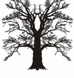 tree oak silhouette vector image vector image