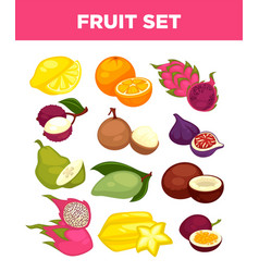 exotic tropical fruits isolated icons set vector image vector image
