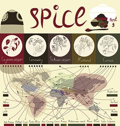 Spice of the world part5 vector