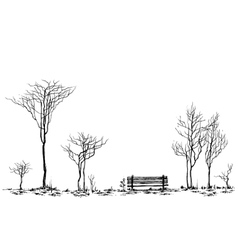Stylized park decor bench and trees drawing vector image