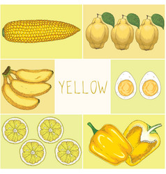 education game yellow food vector image
