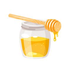 glass honey jar vector image