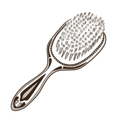 Hair brush vector image