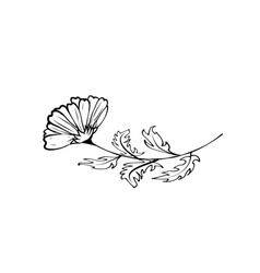 hand drawing a flower vector image
