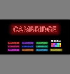Neon name of cambridge city vector