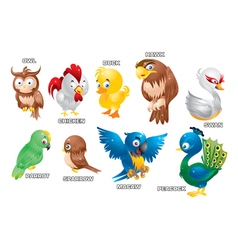 Poultry vector