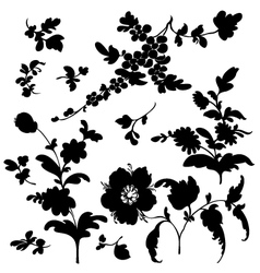 Set silhouette flowers vector