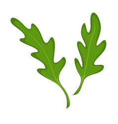 small green fresh leaves vector image